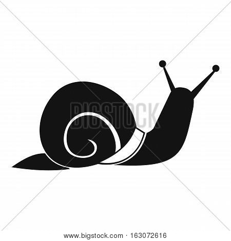 Snail icon. Simple illustration of snail vector icon for web