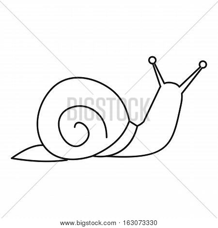 Snail icon. Outline illustration of snail vector icon for web