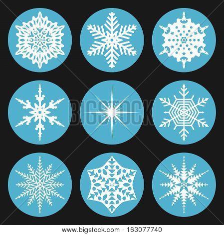 Set Snowflake In Circle