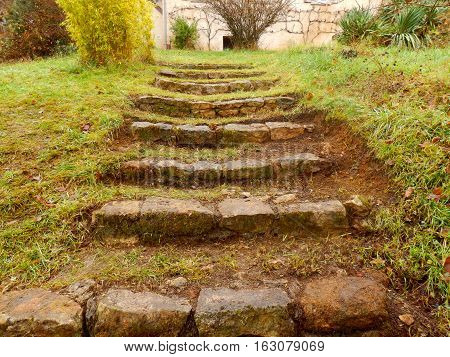 A flight of old stone steps discovered under grass