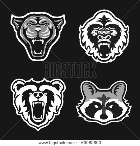 Set of logos for sport team. Panthers, Gorillas, Bears, Raccoons. Animal mascot logotype. Template. Vector illustration. Flat style