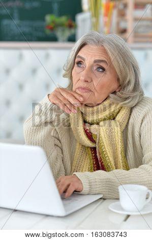 Portrait of a senior woman using computer, communication concept