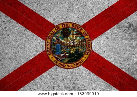 Graphic American State Grunge Flag Of Florida