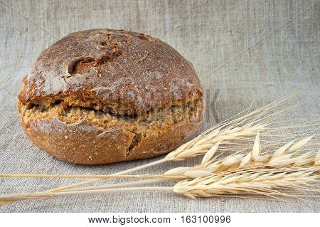 Brown round loaf of bread and spikes on canvas