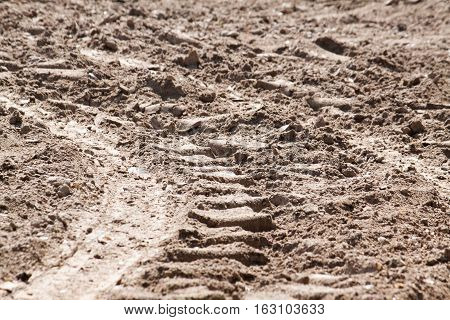 Soil is a natural clay minerals are naturally many species suitable for planting.