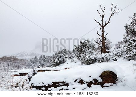 snow blankets the red rocks of Sedona arizona near cathedral rock