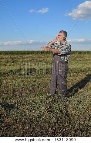 Farmer In Clover  Field