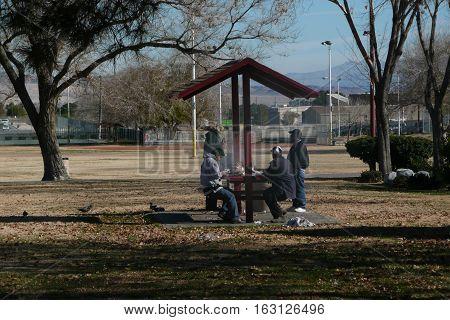 n-us-nv  Las Vegas, Nevada - 2008-01-10:  Picnic in the Park