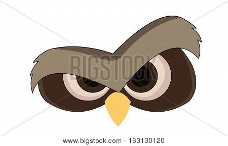 A pair of wide eyes from an owl isolated on a white background