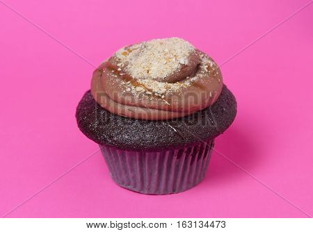 One Chocolate Cupcake over Pink Background isolated