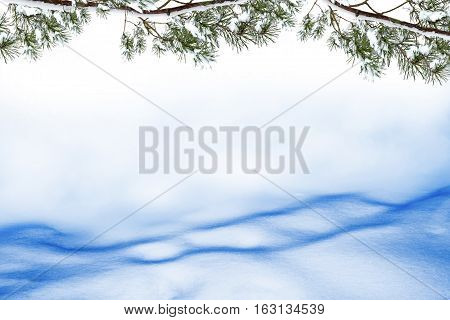 Frozen winter forest with snow covered trees. Christmas card.
