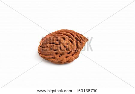 Bone peach isolated on white background 1