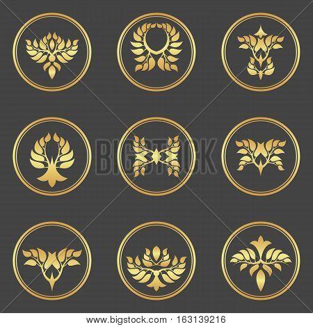 Abstract gold foliate elements. Deciduous ornament. Vector.