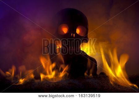 Skull with Burning Flames and Gold Coins