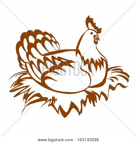 Hen in a nest. Vector isolated on white background.