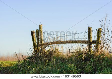 Old and neglected wooden fence with mesh contrasting with the blue sky. The fence is located on the top of a Dutch dike. It is a sunny day at the beginning of the winter season.