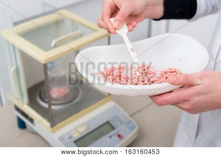 Researching raw freash minced meat at laboratory