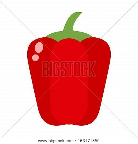 Vegetarian red pepper vector organic gourmet freshness cooking. Colored healthy vegetable food flat illustration. Seasoning nature tasty stem.