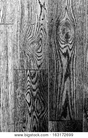 black and white wood texture. background old panels with gnarl