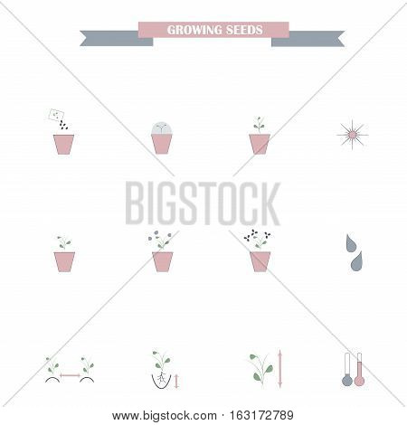 Set of flat colorful grown seeds icons on white, agronomy stock vector illustration