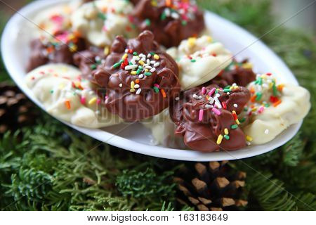 Milk and white chocolate candy decorated with sprinkles on Christmas greenery