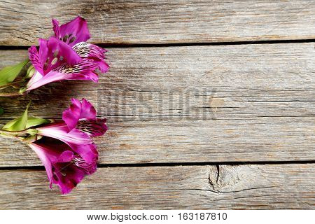 Beautiful Alstroemeria Flowers On A Grey Wooden Table