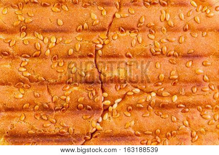 Close up of sesame hamburger bun with grill marks in abstract background.