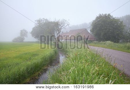 dense fog in Dutch farmland in Netherlands