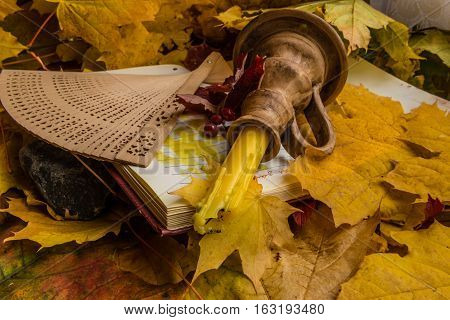 Extinguished candle with the candlestick flooded with wax open book open fandried flowers and viburnum branch on a background of autumn maple leaves