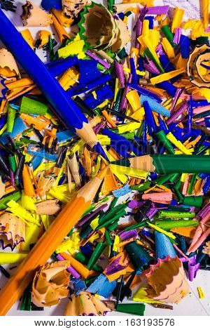 Sharpened colored pencils lying on a pile of shavings from pencil sharpeners.