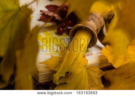 Extinguished candle with the candlestick flooded with wax open book and red viburnum branch on a background of autumn maple leaves