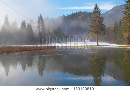foggy winter morning by lake in mountain forest