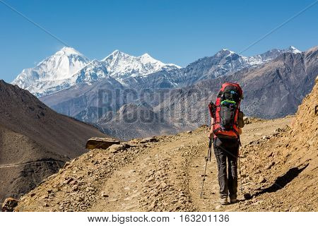 Lonely trekker walking on desert road. Exploring Annapurna circuit trek in Nepal.
