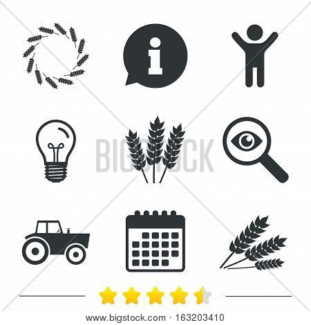 Agricultural icons. Wheat corn or Gluten free signs symbols. Tractor machinery. Information, light bulb and calendar icons. Investigate magnifier. Vector