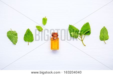 Bottle Of Essential Oil With Fresh Lemon Balm Leaves Setup With Flat Lay On White Wooden Table. Meli
