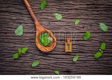 Fresh Lemon Balm Leaves In Spoon Setup With Flat Lay On Shabby Wooden Table. Melissa Tincture Essent