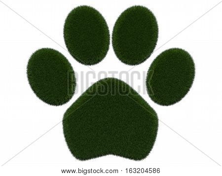Grassy paw on white background. Isolated digital illustration. 3d rendering