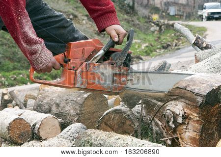 Woodsman is cutting trees with orange chainsaw