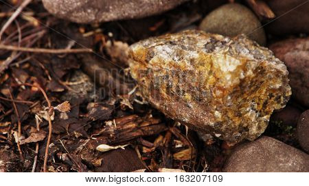 Small rocks on a bed of dry leaves and plant matter.