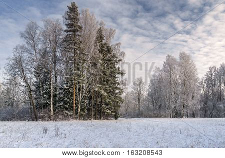 Snow covered park with hoar frosted trees path and picturesque cloudy sky