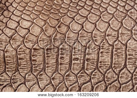 Texture of genuine leather close-up, embossed under the skin a brown crocodile, background