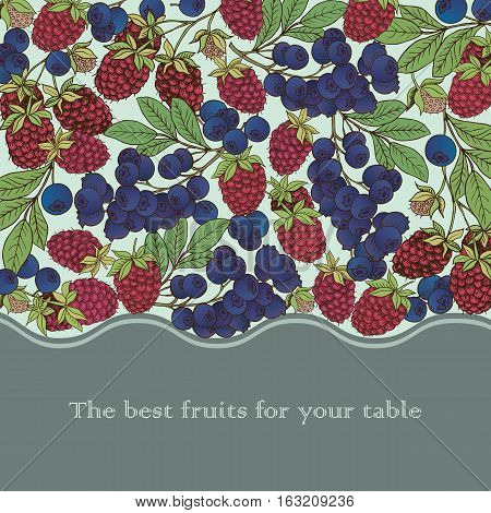 Сard template.Vector frame label with hand drawn raspberry and blueberry