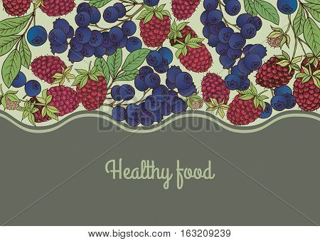 Сard template.Vector frame label with hand drawn berries