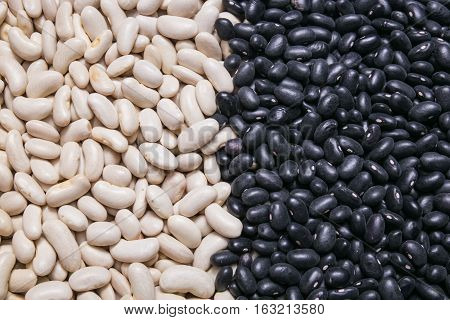 white and black beans background or texture