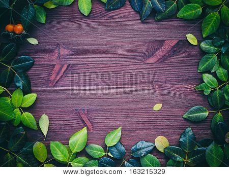 Wooden background with autumn leaves laid out on the perimeter the empty space in the middle vintage toning