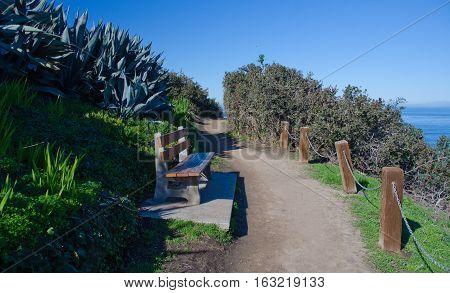 Walking A Trail Near Goldfish Point - 4