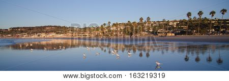 Birds, Beachgoers And Reflections At Low Tide During Sunset At La Jolla Bay