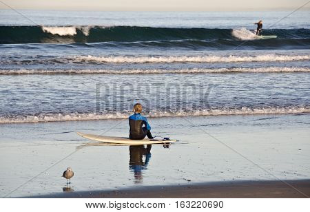 Young Surfer Sitting On A Board At La Jolla Bay