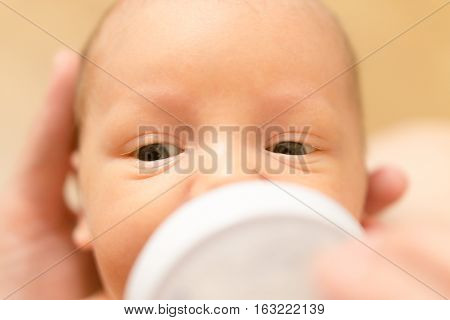 Cute Newborn Baby Drinking Milk From A Bottle. Stock Photo