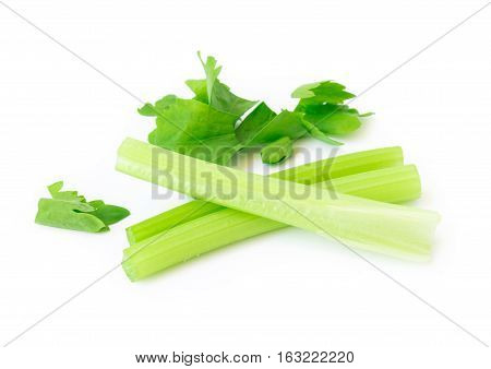 Closeup fresh celery slice on white background Raw material for make cooking
